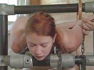 Video amateur sex farm biel nude